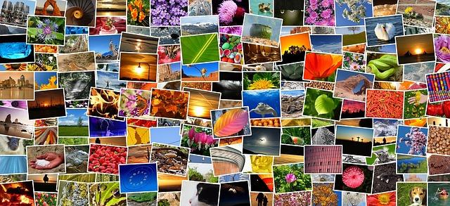 spousta barevných vytištěných obrázků a fotografií